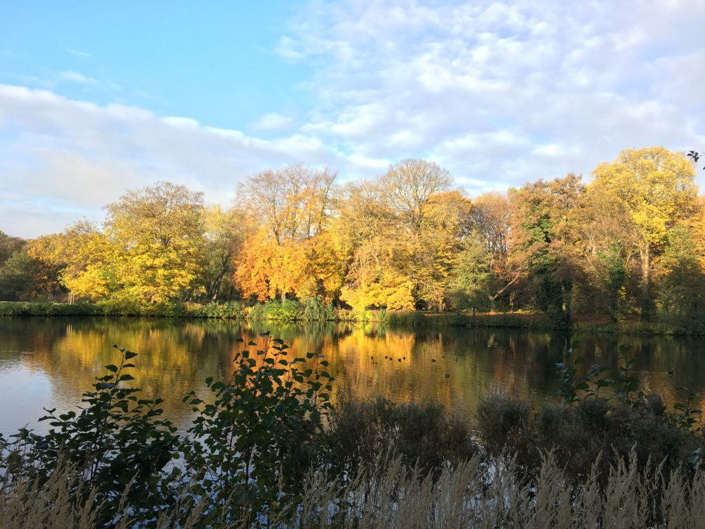 Autumn Scene in Schloss Charlottenburg
